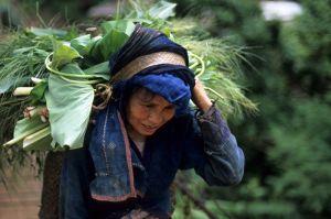 56408227.Vietnam_34.jpg